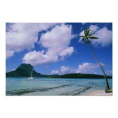Oceania, French Polynesia, Tahiti. View of Posters