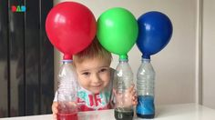 This is how my little scientist inflates balloons! Baking soda in balloons and vinegar with food colouring in bottles