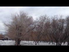 Ураганный ветер в Новосибирске 31 марта 2017 года.  Hurricane Wind in No...