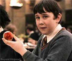 Harry Potter - Neville Longbottom: The Other Chosen One - Beyond Hogwarts