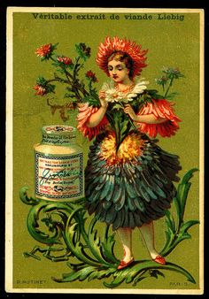 1883. Daisy Flower Girl trading card issued by Liebig Extract of Beef Company.  S133.
