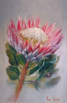 Protea Art, Protea Flower, Watercolor Flowers, Watercolor Art, Blue Flower Wallpaper, Australian Native Flowers, Large Art, Botanical Art, Art Pictures