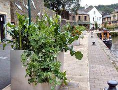 Inspiratie uit de 'eetbare stad' Todmorden