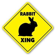 Awesome RABBIT CROSSING Sticker bunny xing cage pet lover gift hare hutch breed bunnie - Sticker Graphic - Auto, Wall, Laptop, Cell $4.26 Check more at https://netherlanddwarfbunny.com/p/rabbit-crossing-sticker-bunny-xing-cage-pet-lover-gift-hare-hutch-breed-bunnie-sticker-graphic-auto-wall-laptop-cell/ #dwarf #dwarfbunny #netherlanddwarf #netherlanddwarfbunny #bunny #bunnycare