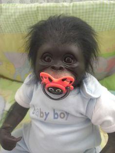 Reborn gorilla by judy dickinson Scary Animals, Cute Funny Animals, Cute Baby Animals, Monkey Doll, Pet Monkey, Monkey Pictures, Cute Baby Pictures, Funny Animal Memes, Funny Animal Videos