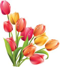 23 Best Clip Art Spring Flowers Images Spring Flowers