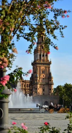 Another view from the stunning Plaza de España, in Seville...