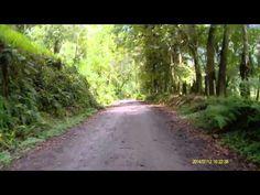 Ruta MTB Ibague-Villa Restrepo-Llanitos-Juntas -hacienda la Rivera-Ibague