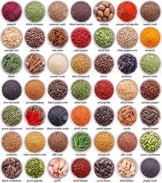 large collection of different spices and herbs isolated on white background Learn English Grammar, English Vocabulary Words, Learn English Words, English Language Learning, English Writing, English Study, Teaching English, English Phrases, Food Vocabulary