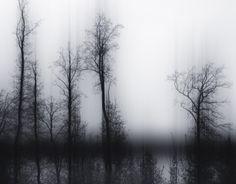 Slide - trees in winter | photography black & white . Schwarz-Weiß-Fotografie . photographie noir et blanc | Photo: Jürgen Heckel |