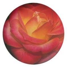 A Rose Aflame Plate from Florals by Fred #zazzle #gift