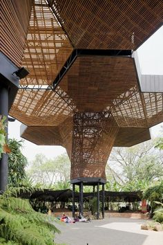 wood canopy #architecture #green