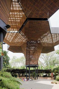 Wood canopy | el Orquidiario de Medellín, Colombia