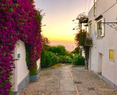 A stroll around Anacapri, stage Now that you've climbed these few steps, look back and enjoy the view!