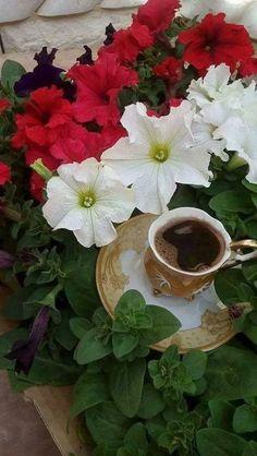 ...5/25/2019 having coffee Coffee Gif, Coffee Love, Coffee Cups, Good Morning Image Quotes, Good Morning Wishes, Morning Quotes, Good Morning Coffee, Coffee Photography, Turkish Coffee
