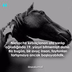 Nietzsche kırbaçlanan ata sarılıp ağladığında 19. yüzyıl bitmemişti daha. Biz bugün, bir avuç insan, faytonları tartışmaya ancak başlayabildik.   (Kaynak: Instagram - neokumali)   #sözler #anlamlısözler #güzelsözler #manalısözler #özlüsözler #alıntı #alıntılar #alıntıdır #alıntısözler #şiir #edebiyat