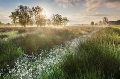Fotografie tips voor betere landschapsfoto's | Bart Heirweg Landschapsfotografie