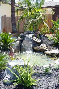 . Small Backyard Ponds, Pond Water Features, Inspirational, Plants, Gardens, Garden Landscaping, Plant, Planets