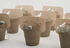 peat pots by berta