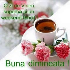 Elena Mirghis - Google+ Cata, Tea Cups, Tableware, Food, Google, Quotes, Model, Coffee Cup, Quotations