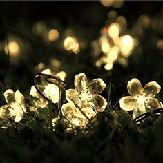 Gdealer solar string lights 20ft 30 led warm white crystal ball outowin led solar powered outdoor string lights 308ft 50 blossom flower fairy213ft 30 water drop197ft 30 starfish light for garden patio wedding party aloadofball Gallery