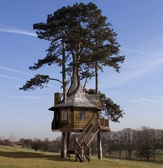 Amazon Tree Houses was formed in 2007 by Derek Saunderson, a Joiner and Treehouse builder with over twenty years experience. His aim was to bring the craft of treehouse building back from the accountants and sales-men, and put it firmly back in the hands of the crafts-men who's passion for treehouse building shows in their skill and commitment for creating beautiful natural structures.
