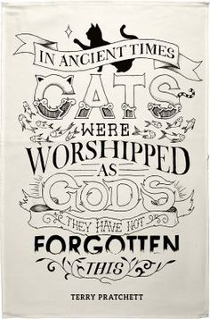 Cat tea towel 6 This classic quote by Terry Pratchett has been illustrated and - Funny Cat Quotes Cat Quotes, Animal Quotes, Cat Sayings, Animal Humour, Crazy Cat Lady, Crazy Cats, Cute Cats, Funny Cats, Adorable Animals