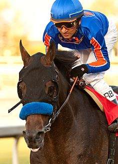 """A very special gift from """"Game on Dude"""" and Bob Baffert will be auctioned off in our Fall Auction Fundraiser! Don't Miss It!"""