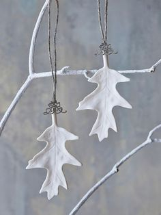 Delicate, pretty and simply beautifully made, these pure white porcelain leaf decorations will add natural magic to your displays this Christmas.