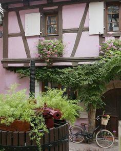 Wat een leuke straatjes en doorkijkjes heeft Eguisheim! #photography #travelphotography #traveller #canonnederland #canon_photos #fotocursus #fotoreis #travelblog #reizen #reisjournalist #travelwriter#fotoworkshop #willemlaros.nl #reisfotografie #moto73 #suzuki #v-strom #MySuzuki #motorbike #motorfiets #tw #fb #visitalsace #alsace #eguisheim #ribeauville #mittelbergheim #marienthal