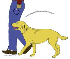 Dog Obedience Training: Dog Training Hand Signals -Heel: Tap your hip or circle motion of your hand near… – Sam ma Dog Training Service Dog Training, Basic Dog Training, Service Dogs, Dog Hand Signals, Hypoallergenic Dog Food, Deaf Dog, Dog Minding, Aggressive Dog, Dog Barking