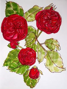 water color garden roses