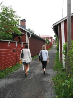 """""""Cat whipper's lane"""", one of the narrowest in Finland Archipelago, Homeland, West Coast, Finland, Countryside, Pure Products, Cat, Beautiful, Cat Breeds"""