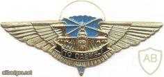 UKRAINE 79th Separate Airmobile Brigade parachutist wings