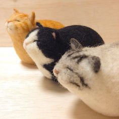 What are these cats smelling? Don't you wanna know? #cat #gingercat #bicolorcat #silvertabby #felt #felted #felting #kitty