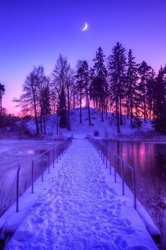 Beautiful snowy way