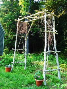 Arbor idea, I have trees to cut down and am thinking about making a natural fence/arbor as the fence to my garden.