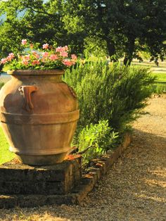 Typical ingredients of Tuscany, terracotta, geraniums, rosemary and sage at Villa Fabbri, La Selva Vacation villas in southern Chianti.  Image by Sherry Mason