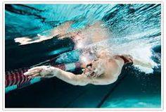 ผลการค้นหารูปภาพสำหรับ ท่าว่ายน้ำ
