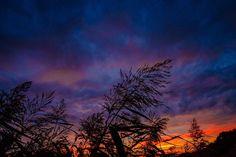 #sunset #sunsets #sunsetporn #sunsetlovers #sunset_pics #jj_sunsetlovers #nature #natural #naturephotography #photooftheday #fujixt2 #fujifeed #artystycznapodroz #lubiepolske #pniewy #poland #ig_energy