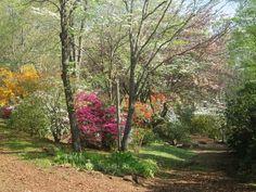 Fred Hamilton Gardens, Hiawassee: See 58 reviews, articles, and 62 photos of Fred Hamilton Gardens, ranked No.6 on TripAdvisor among 18 attractions in Hiawassee.