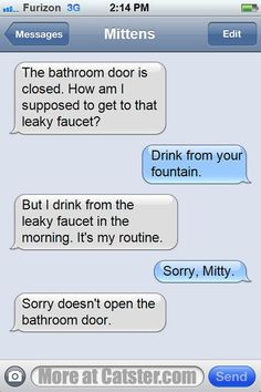 Texts from Mittens: Wherein Phil the Dog Is Even MORE Insufferable   Catster