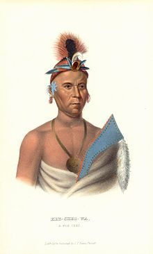 """The Meskwaki (sometimes spelled Mesquakie or Meskwahki) are a Native American people often known to outsiders as the Fox tribe. They have often been closely linked to the Sauk people. In their own language, the Meskwaki call themselves Meshkwahkihaki, which means """"the Red-Earths."""" Historically their homelands were in the Great Lakes region. The tribe coalesced in the St. Lawrence River Valley in Ontario; it later moved to Michigan, Wisconsin, Illinois, and Iowa. In the 19th century…"""