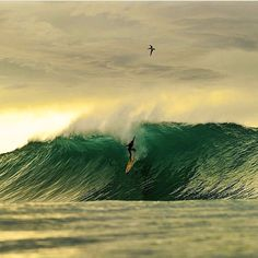 Every wave is different. @russellordphoto #surf #surfing #surfphotography…