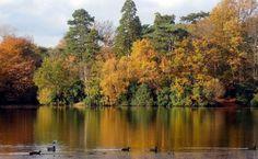 Hartsholme Country Park, Lincoln, England