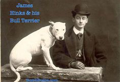 "Check out my article ""How the English Bull Terrier Came to Be""! 