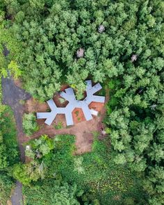 Florian Busch embeds branch-shaped holiday home in Japanese forest Concrete Steps, Concrete Floors, Shade Screen, Forest Pictures, Architectural Section, Timber House, Forest House, Miyazaki, Large Windows