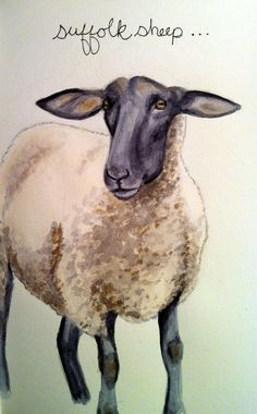 Farm animal art pictures ideas for 2019 Black Faced Sheep, Black Sheep, Suffolk Sheep, Family Art Projects, Sheep Illustration, Pop Art Background, Sheep Paintings, Black Art Painting, Sheep Art