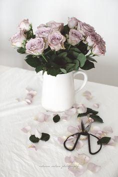 Random Ramblings and Inspiration Everlasting Love, Rose Petals, Beautiful Flowers, Bloom, Kitchen Design, Sunday, Roses, Dreams, Random