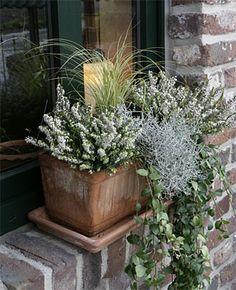 die 17 besten bilder von blumenkasten fensterbank balcony gardening und potted plants. Black Bedroom Furniture Sets. Home Design Ideas